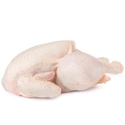 pollo_860001