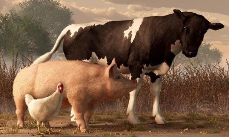 Світові ціни на м'ясо в березні зросли на 2,3%