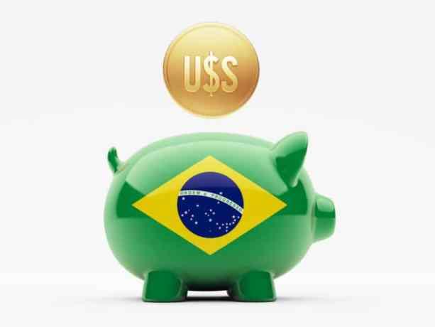 Завдяки експорту Бразилія збільшила своє поголів'я на 24%