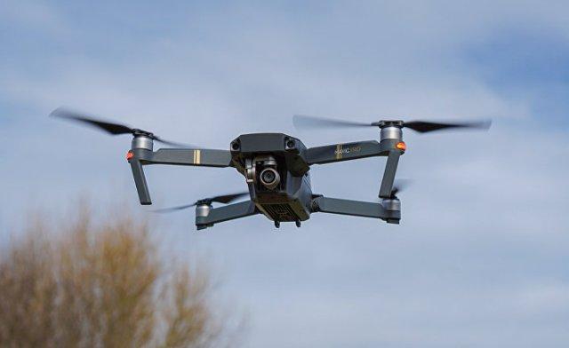 В Росії оленярів забезпечать дронами для контролю поголів'я