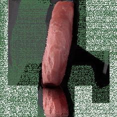 2 (10oz) Pork Tenderloin-250