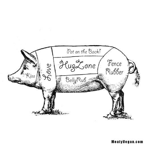 Pig Diagram – Rethought   Meaty Vegan