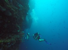 The Bunaken wall