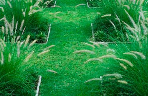 Садовые дорожки из травы или камней