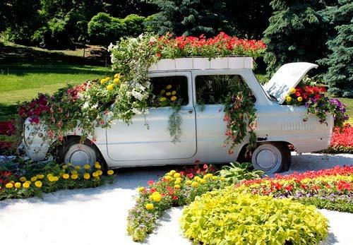 Посадить растения можно на всю поверхность старой машины