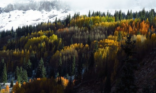 San Juan Mountains first snow. Image by DL Bender