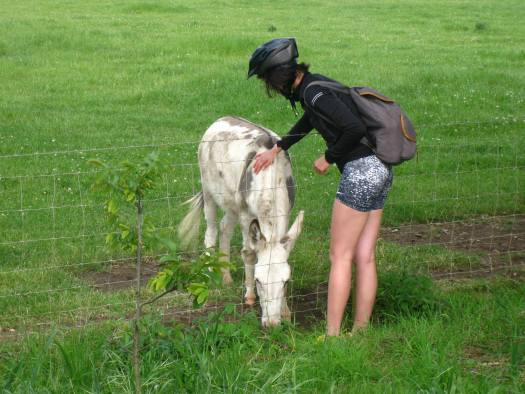 Holly making friends with a donkey.