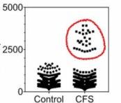 T-cell-TCRs-bulk-mini