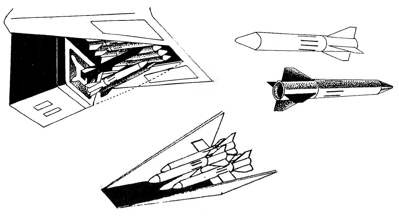 Scar Cobra Long Range Multipurpose Missile