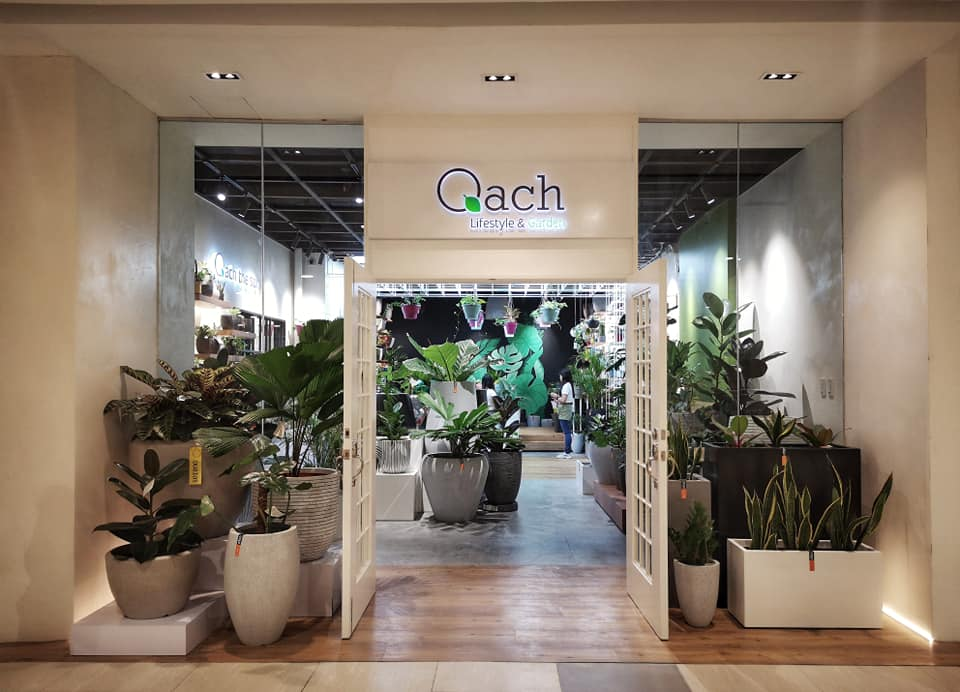 Qach – Lifestyle Garden