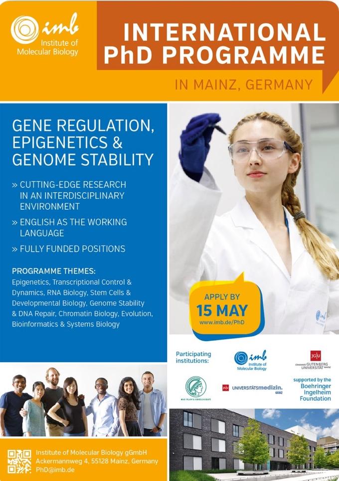 IMB's International PhD Programme