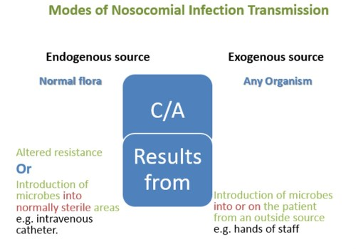 Modes of Nosocomial Infection Transmission