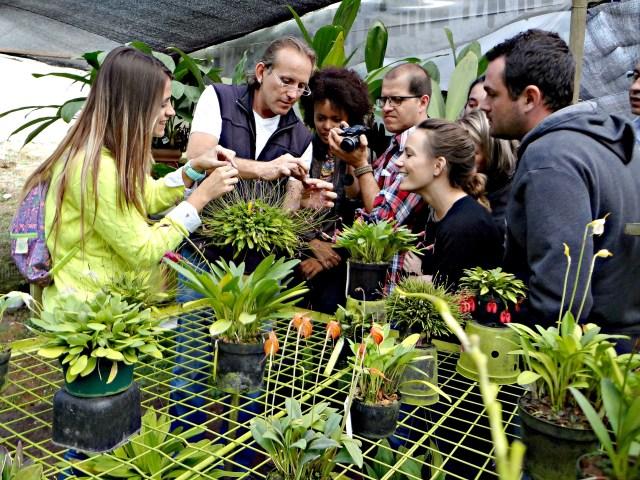 Orchid greenhouse, Entre Flores