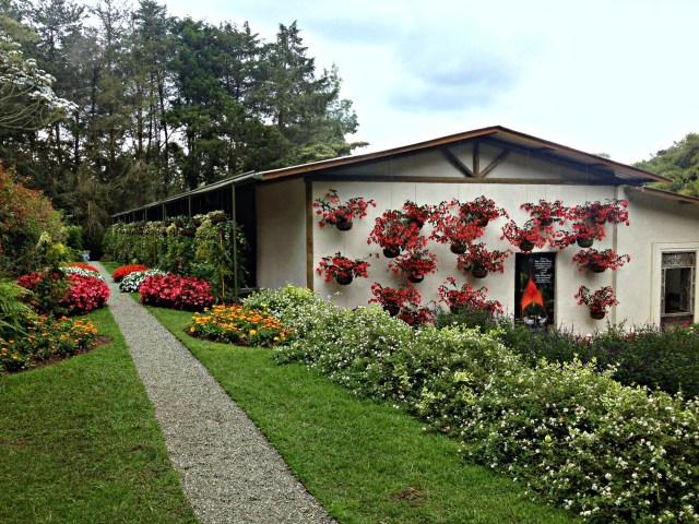 Garden, Entre Flores