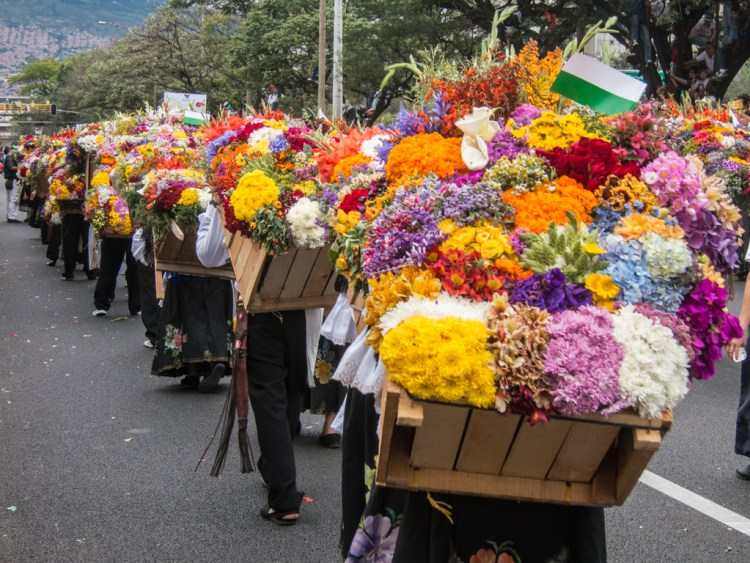 Flower Parade (photo: David Lee)