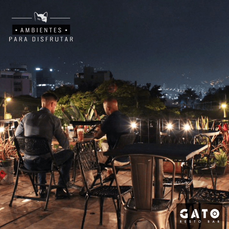 Dining with a view at Gato Resto Bar