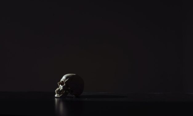 "SurgSoc and Medguide Present ""Skull and Brain Anatomy"""