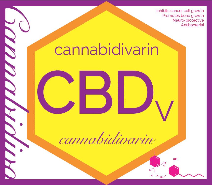 Co je CBDV ?