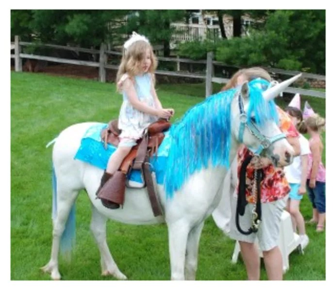 Indianapolis Pony Ride Parties And Petting Zoo Petting Zoo Indianapolis In The Bash