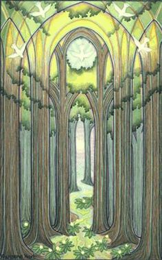 Forest Cathedral - © Francene Hart