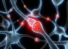 ¿Los primeros marcadores del alzhéimer?