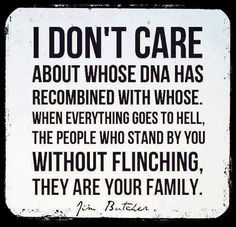 I don't care about whose DNA has recombined with whose.  When everything goes to hell, the people who stand by you without flinching, *THEY* are your family. ((Love, Love, LOVE!!!!))