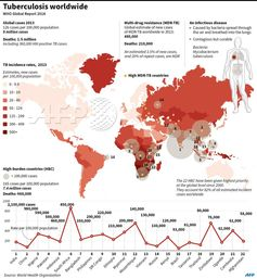 Tuberculosis WorldwideThis AFP infographic (sourced from http://goo.gl/NECDLX) is a good summary with comprehensive Tuberculosis world distribution. Still 1.5 million people died of the curable disease in 2013. Usable information when you consider becoming PT - perpetual Traveler, medical infrastructure is critical factor to decide your destinations.#tuberculosis