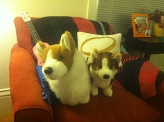 """Do my two stuffed corgis count as pets?"" -@Leslie Kincaid"