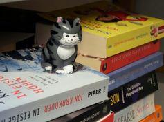 Buch und Katze