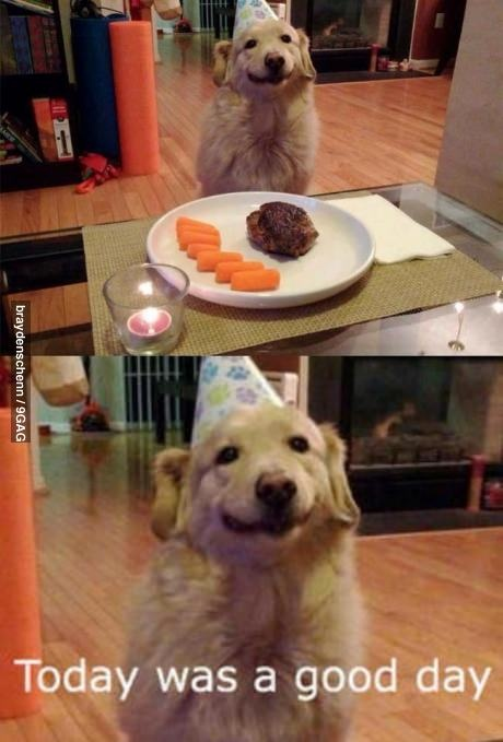 "That happy face on that birthday dog...it just makes me smile. He's saying, ""Today was a good day!"""