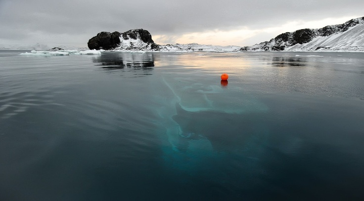Mar Sem Fim Yacht Antarctica Off The Coast