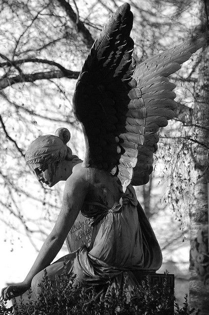 Crying angel statue.....I love this, must figure out which board it deserves to go on or make another for it.