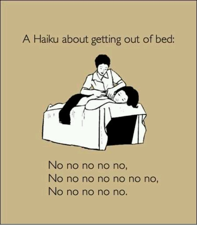Haiku. Every morning.