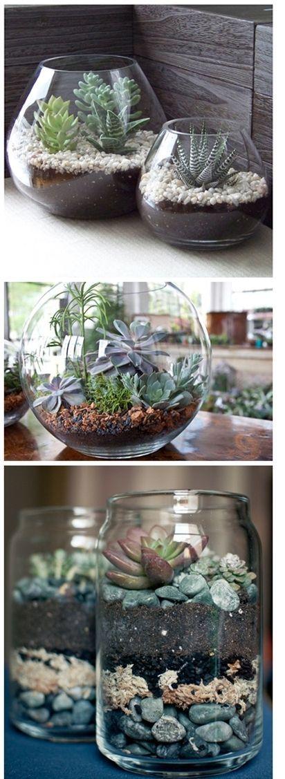 Beautiful DIY Succulent Terrariums - Super easy ! Just layer succulent potting soil, rocks, and cactus. Love this !
