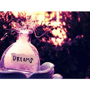 """a DREAM is a WISH your HEART makes"" - cinderella"