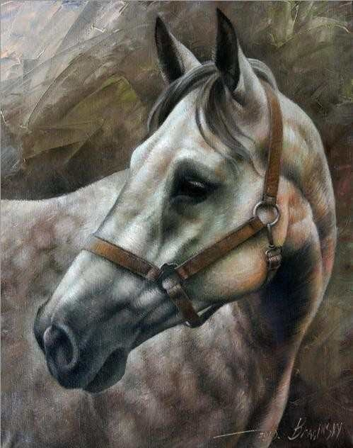 Head Horse Poster By Arthur Braginsky. | Art By Equine | Pinterest