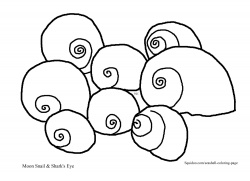 free printable seashell coloring pages