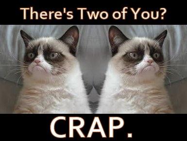 Grumpy Cat wishes Twins a (happy) birthday!