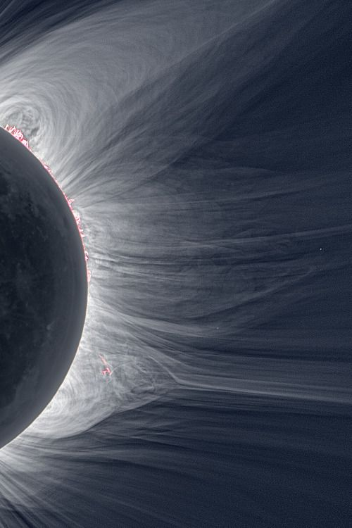 "Detailed View of a Solar Eclipse Corona ""Only in the fleeting darkness of a total solar eclipse is the light of the solar corona easily visible."""
