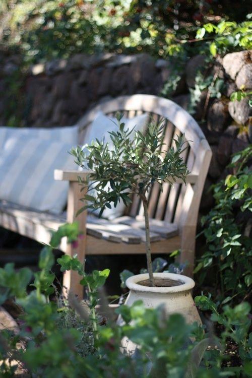 Garden seat in a quite corner!