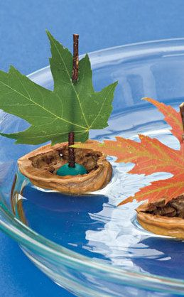 Make a sailboat with a walnut shell & autumn leaf kids crafts
