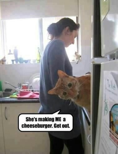 She's making me a cheeseburger...get out!