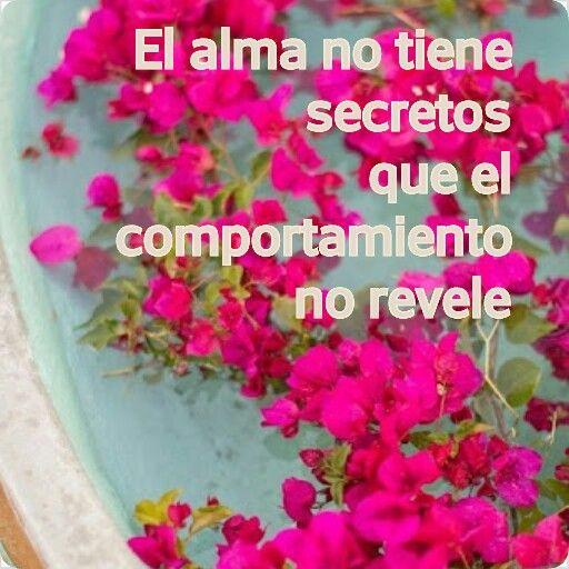 #sinceridad #alma