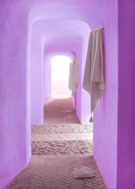 How amazingly beautiful and serene is this photo of Pantone's Color of the Year 2014, radiant orchid?