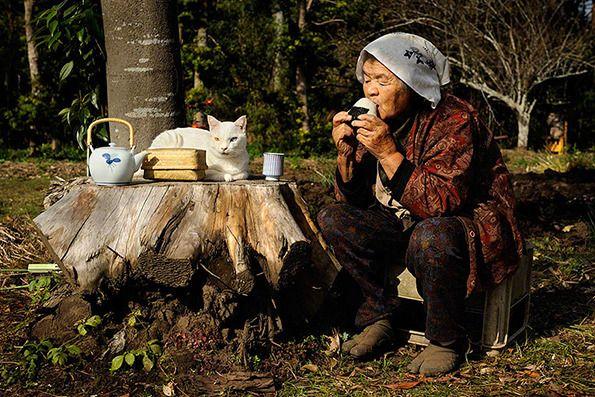 Nonna Miyoko Ihara e il suo fidato gatto randagio sono una partita in cielo # fotografia # Giappone