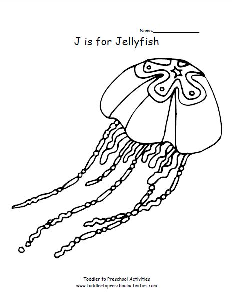 is for jellyfish coloring page kids coloring pages pinterest