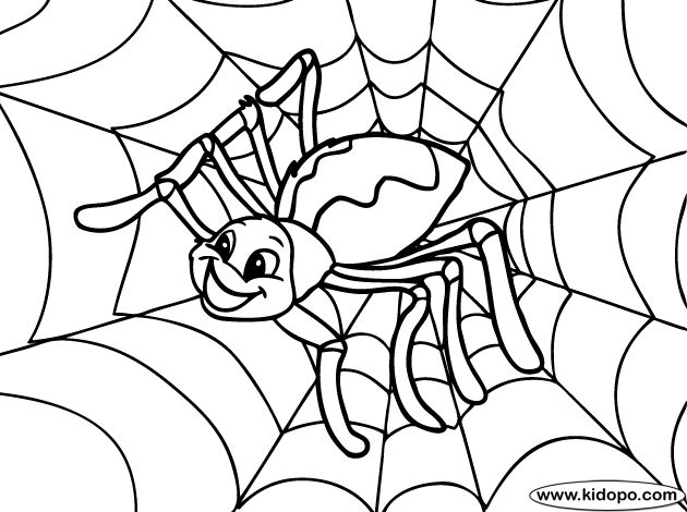 spider coloring page spiders pinterest