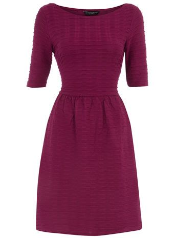 Berry half sleeve flare dress from Dorthy Perkins