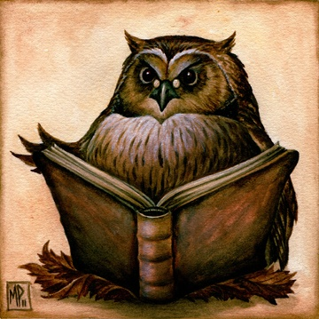 'Wise Owl' by Marc Potts