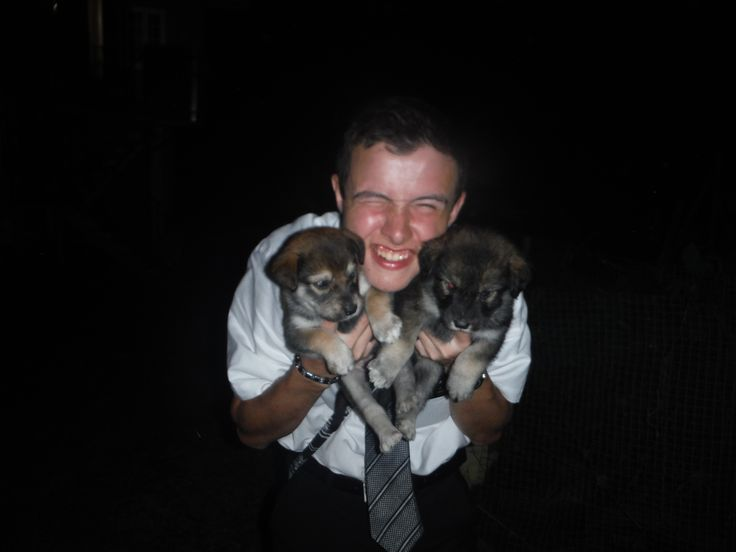 "These photos are from Taylor's camera. So, everybody should think, ""Thanks Elder Taylor"" when they see these. Elder Taylor with these husky puppies he always talks about. I just thought it was really funny and you guys would get a laugh out of his face."